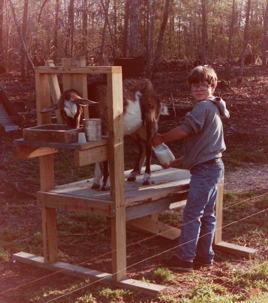 Jeremy milking a goat